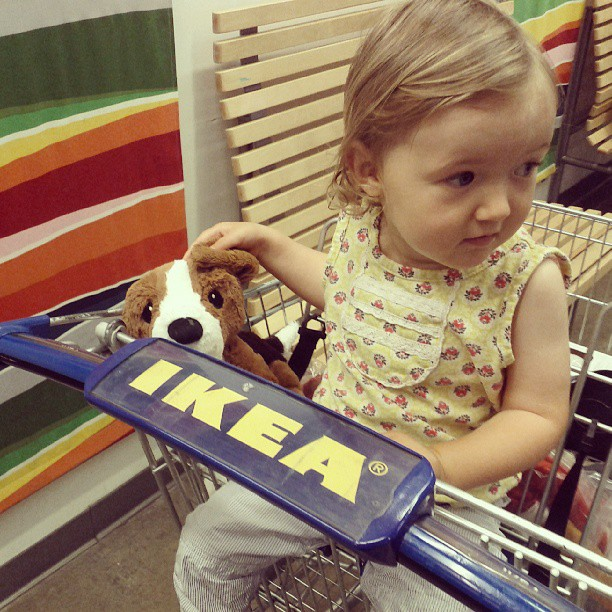 Went to IKEA to get a couch and we brought home a dog.