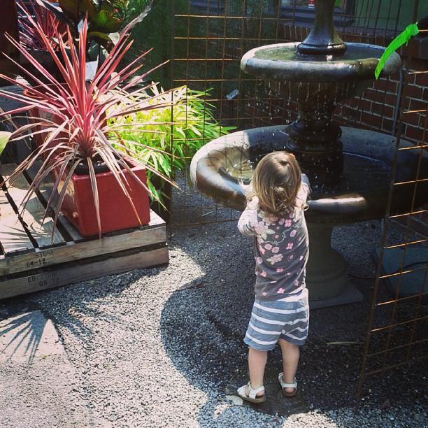 Of course E found the fountain!