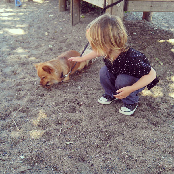 Emma likes every dog.