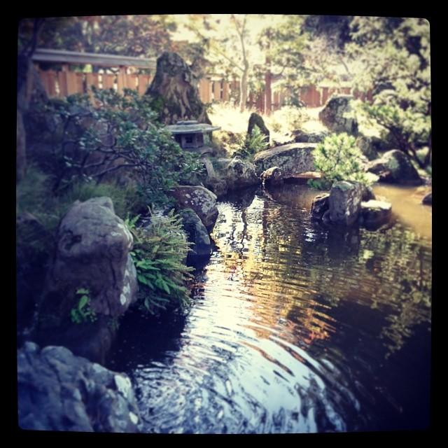 Serene spot