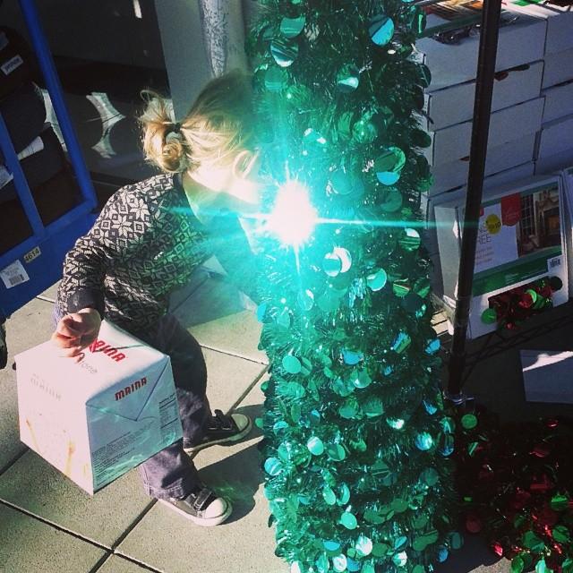 Panettone box and a shiny tree