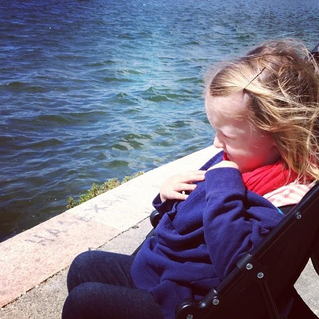 On a windy lakeside walk