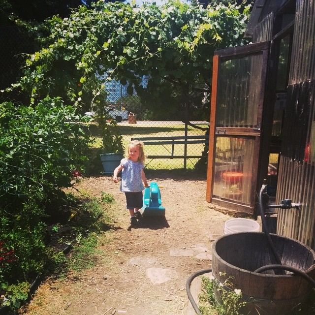 Library story time and toddler garden visits