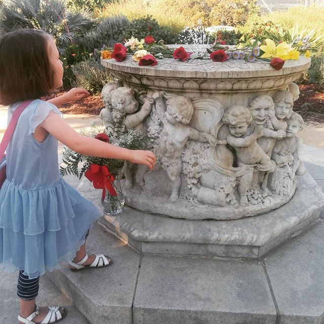 We found this fountain covered with flowers @gardens_lake_merritt