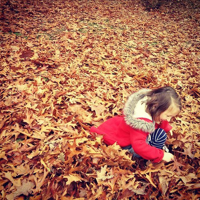 In piles of leaves
