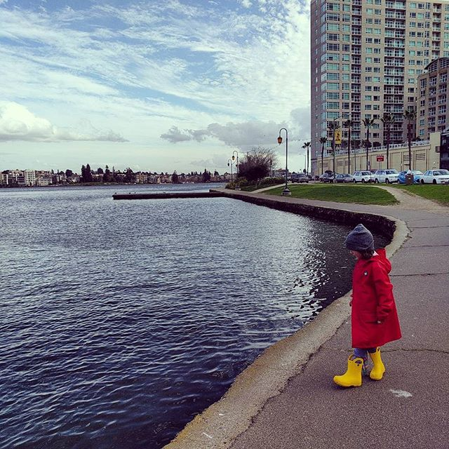 lake side, on our way to the library
