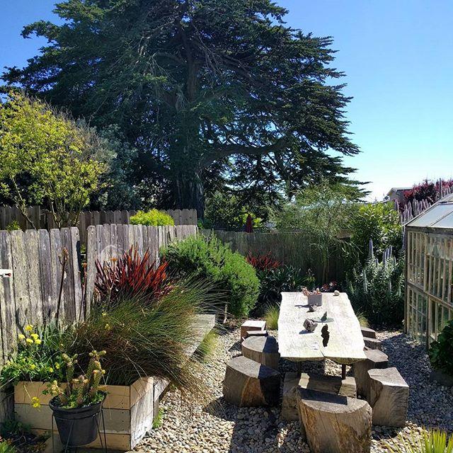 this backyard! @generalstore