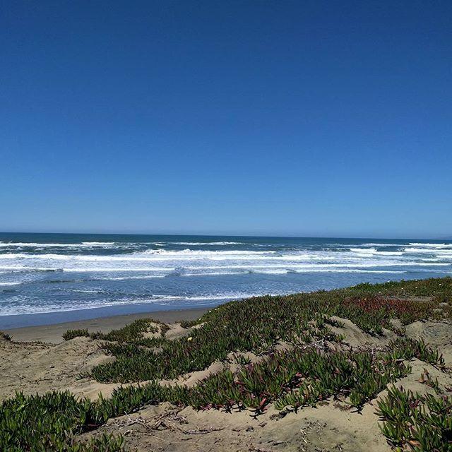 I love you, ocean.