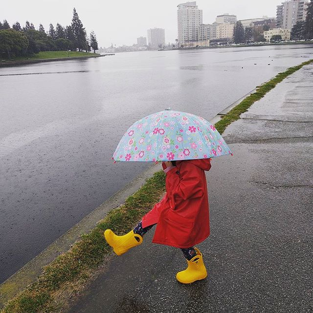 Lake Merritt in the rain