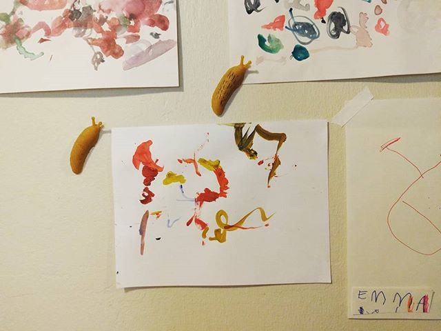 playing with banana slugs @laurenthomas416