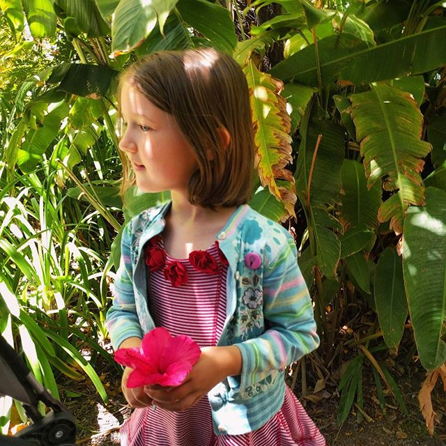 Already today we saw a chicken, a lizard, a ladybug and a humming bird. We never know what treasures we will find in the gardens.