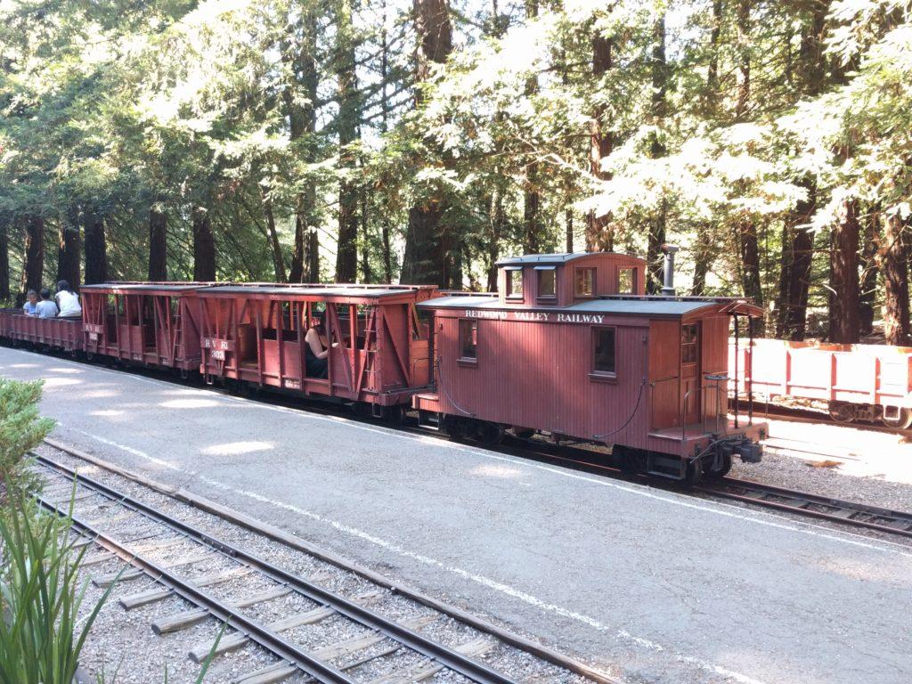 steam train tilden