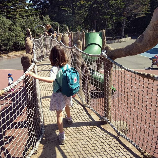 this playground at the zoo is as exciting as the animals