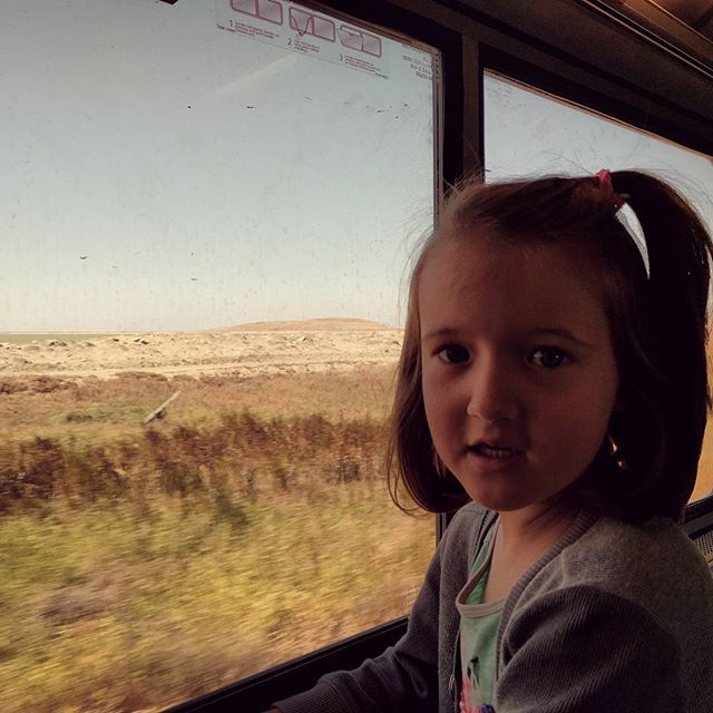 """Clover is a pro at riding Amtrak now. She even  announced over the speaker, Now arriving in Oakland."""""""