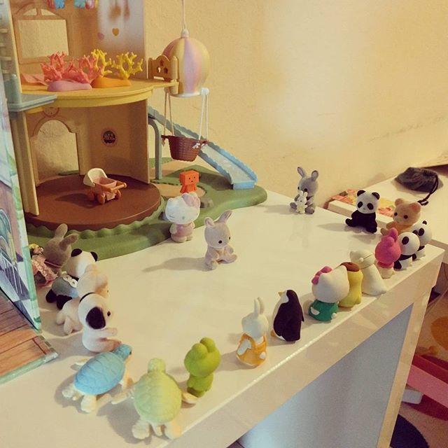 little rabbit's birthday