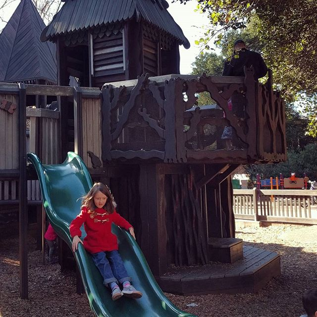Playing at Frog Park for the first time on this New Year's Day. May be the best park in East Bay.