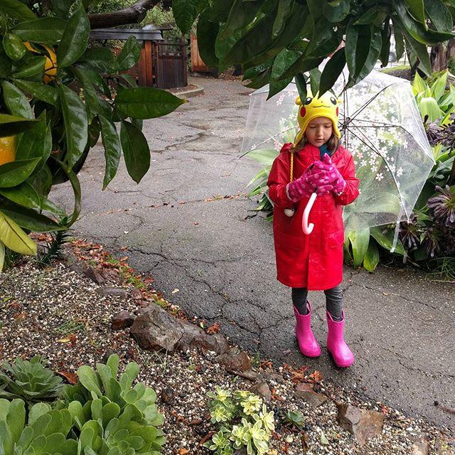 Last month in the Lake Merritt Gardens. Feel like it's been raining forever.