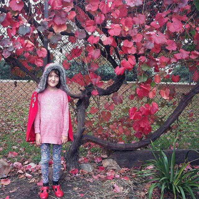 Thankful for Clover and our favorite @gardens_lake_merritt ️